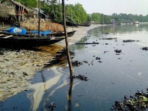عوارض پخش آلودگی های نفتی بر سواحل